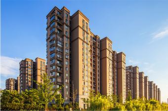 房地产与建设工程业务